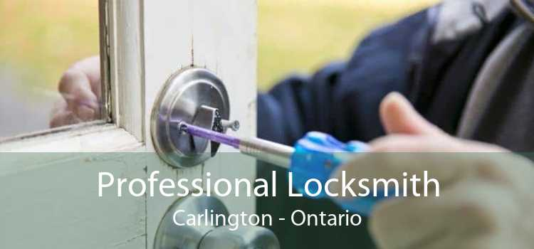Professional Locksmith Carlington - Ontario